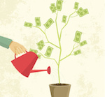 Investment - Money plant