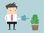 Businessman watering money plant vector
