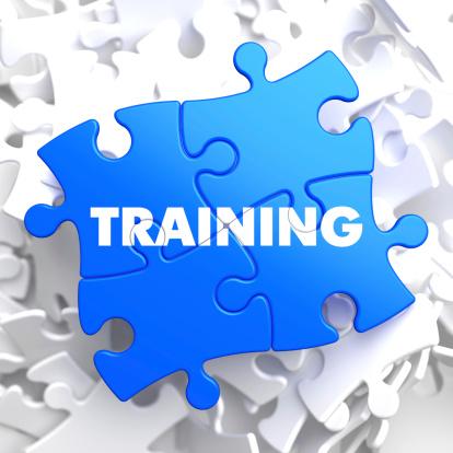 Training on Blue Puzzle.